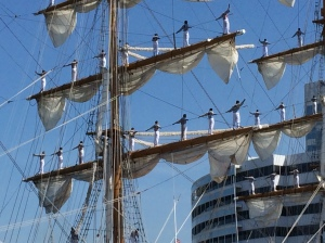 Tall Ship_2